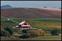 Red barn and wine country landscape from above. Napa Valley, California, USA ( color)