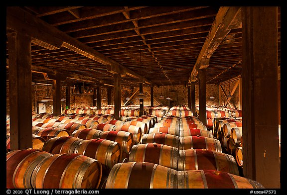 Barrels of wine in wine cellar. Napa Valley, California, USA (color)