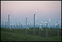 Altamont wind farm at dusk. California, USA ( color)