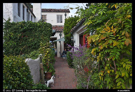 Alley. Carmel-by-the-Sea, California, USA