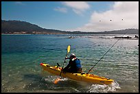 Sea kayaking into Carmel Bay. Carmel-by-the-Sea, California, USA ( color)