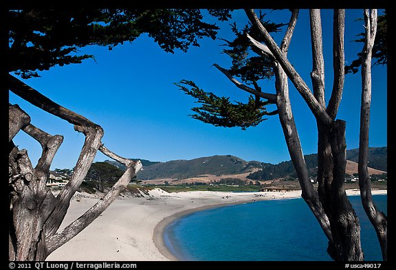 Carmel River Beach framed by Cypress trees. Carmel-by-the-Sea, California, USA (color)