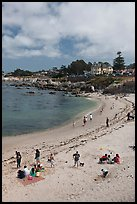 Beach, Lovers Point Park. Pacific Grove, California, USA ( color)