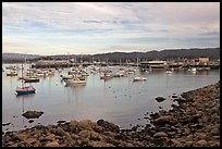 Harbor and Fishermans Wharf, late afternoon. Monterey, California, USA ( color)