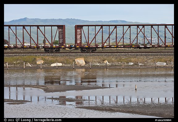 Freight train cars, Alviso. San Jose, California, USA (color)