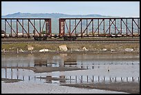 Freight train cars, Alviso. San Jose, California, USA ( color)