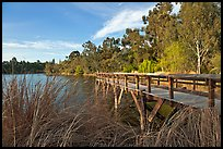 Pier and lake,  Vasona Lake County Park, Los Gatos. California, USA (color)