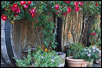 Barells and flowers, Savannah-Chanelle Vineyards, Santa Cruz Mountains. California, USA (color)