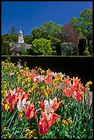 Flowers and garden shop, Filoli estate. Woodside,  California, USA (color)