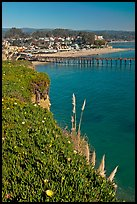 Pier and village. Capitola, California, USA (color)