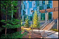 Redwood trees and modern building, UCSC. Santa Cruz, California, USA (color)