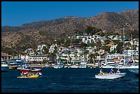 Avalon seen from harbor, Santa Catalina Island. California, USA (color)