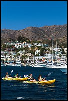 Sea kayaking in Avalon harbor, Catalina Island. California, USA ( color)