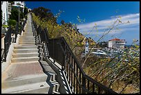 Stairs above harbor, Avalon Bay, Santa Catalina Island. California, USA (color)