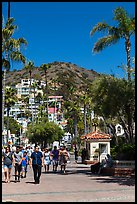 Street near waterfront, Avalon Bay, Santa Catalina Island. California, USA (color)