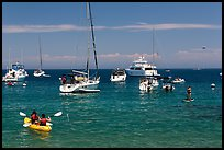 Recreational activities on water, Avalon, Santa Catalina Island. California, USA ( color)