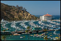 Pier and Catalina Casino, Avalon Bay, Santa Catalina Island. California, USA ( color)