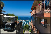 House and golf cart overlooking harbor, Avalon, Santa Catalina Island. California, USA ( color)