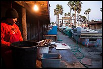 Fisherman, beachside fishing cooperative. Newport Beach, Orange County, California, USA ( color)