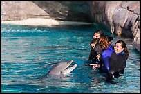 Guests interact with dolphin. SeaWorld San Diego, California, USA ( color)