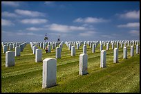 Gravestones, Fort Rosecrans National Cemetary. San Diego, California, USA ( color)