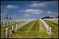 Headstones, Fort Rosecrans National Cemetary. San Diego, California, USA ( color)