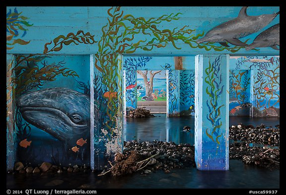 PCH underpass decorated with mural of ocean life, Leo Carrillo State Park. Los Angeles, California, USA (color)