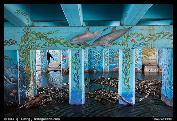 Man walking dog in underpass with mural, Leo Carrillo State Park. Los Angeles, California, USA (color)