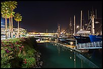Ventura harbor at night. California, USA ( color)