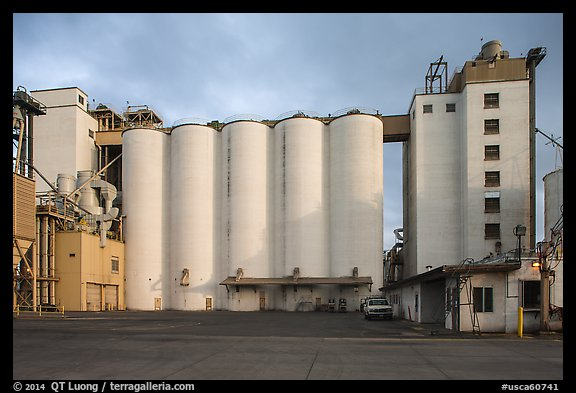 Grain silo. California, USA (color)