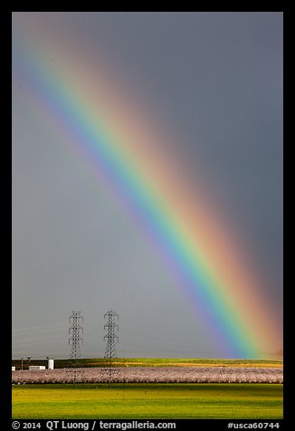 Rainbow above agricultural lands. California, USA (color)