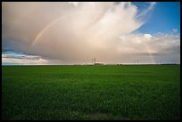 Pasture and rainbow in the spring. California, USA ( color)