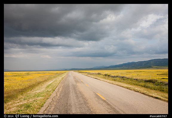 Road. Carrizo Plain National Monument, California, USA (color)