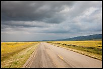 Road. Carrizo Plain National Monument, California, USA ( color)