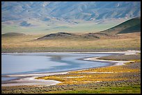 Soda Lake shore and hills from above. Carrizo Plain National Monument, California, USA ( color)