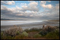 Soda Lake, late afternoon. Carrizo Plain National Monument, California, USA ( color)
