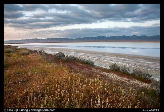 Soda Lake with reflections of Temblor Range. Carrizo Plain National Monument, California, USA (color)