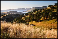 Pictures of San Luis Reservoir