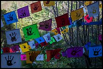 Flags in garden. Big Sur, California, USA ( color)