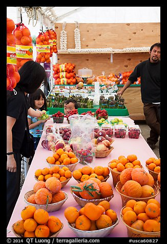 Customers buying fruit at stand. California, USA (color)