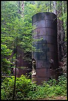 Lime kilns, Limekiln State Park. Big Sur, California, USA ( color)