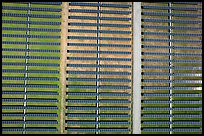 Aerial view of solar energy farm. San Jose, California, USA ( color)