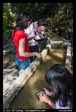 Visitors panning for gold, Gold Bug Mine, Placerville. California, USA (color)