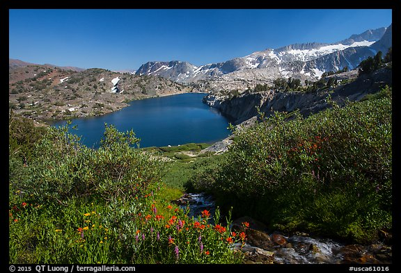Wildflowers, stream, and lake, Twenty Lakes Basin, Inyo National Forest. California, USA (color)