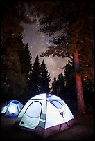 Lighted tents, forest, and Milky Way, Prosser Ranch Group Campground, Tahoe National Forest. California, USA ( color)