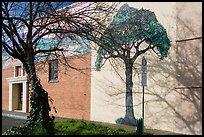 Tree and mural, Willits. Sonoma Valley, California, USA