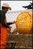 Man carving elaborate pumpkin. Half Moon Bay, California, USA ( color)