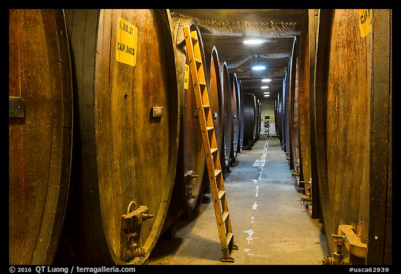 Huge barrels in cellar, Korbel Champagne Cellars, Guerneville. California, USA (color)