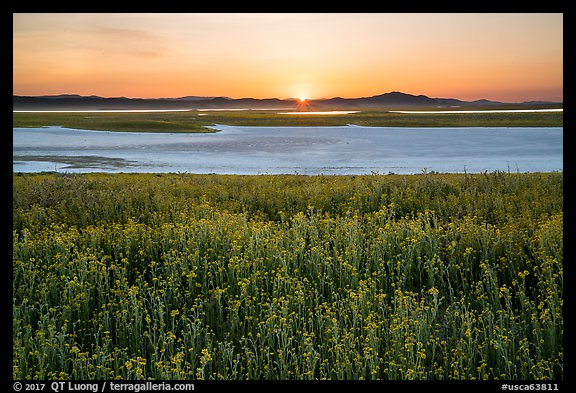 Sunset over Soda Lake in spring. Carrizo Plain National Monument, California, USA (color)