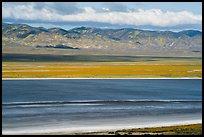 Soda Lake and Temblor Range in springtime. Carrizo Plain National Monument, California, USA ( color)